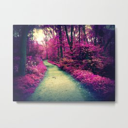 Mystical Path in Forest Park, Forest, Woodlands Metal Print
