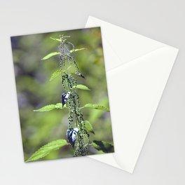 Stinging Nettle 5288 Stationery Cards