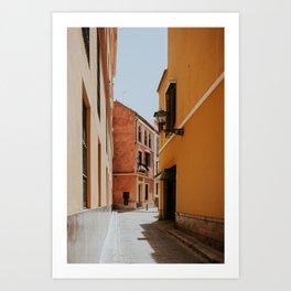 A walk in the sun Art Print