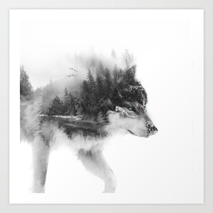 Wolf Stalking Kunstdrucke