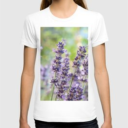 Lavender Flowers #1 #floral #art #society6 T-shirt