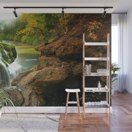Washington USA Gifford Pinchot Nature Waterfalls forest Rivers Stones Forests river stone Wall Mural