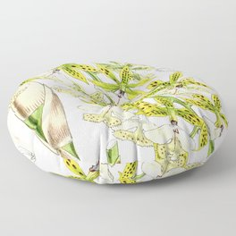 A orchid plant - Vintage illustration Floor Pillow