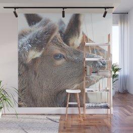 Watercolor Elk Calf 03, Estes Park, Colorado, Crowded Wall Mural