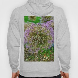 Purple Flower Close Up of Alliums Welcome to Boston Common Hoody