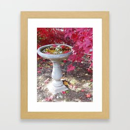 Fall Birdbath Framed Art Print