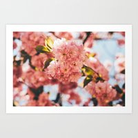 Sping Blooms Art Print