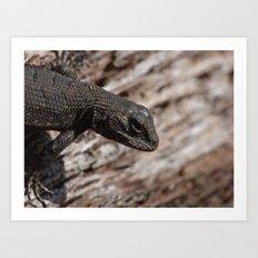 lizard fall 2015 Art Print