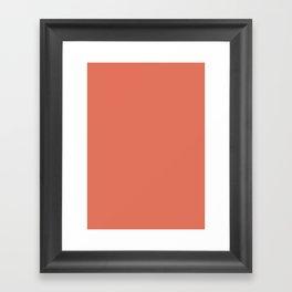 Terra cotta Framed Art Print