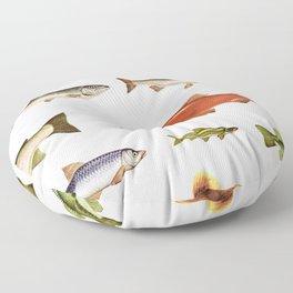 Fishing Line Floor Pillow