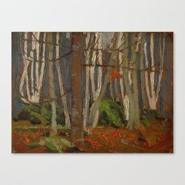 Tom Thomson Birch Woods in Autumn c. 1916 Canadian Landscape Artist Canvas Print