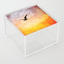 dreaming of flight Acrylic Box