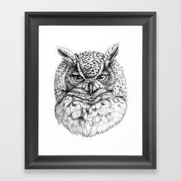Owl SK136 Framed Art Print