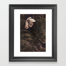 butterfly anemone Framed Art Print