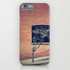 Tree on a Hill iPhone 6s Slim Case