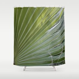 Photographic Abstract Of Fan Palm With Fibrous Threads Shower Curtain