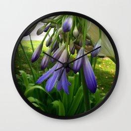 Purple Agapanthus Wall Clock