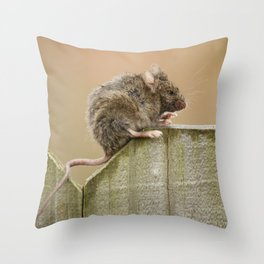 Mouse on the Fence Throw Pillow