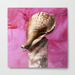 Magic Shell  Metal Print