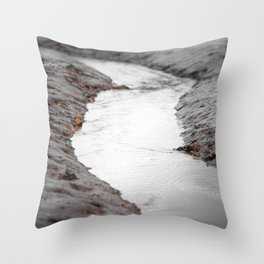 silt curve Throw Pillow