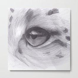Cheetah Eye Drawing Metal Print