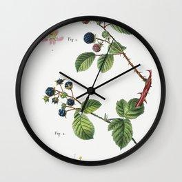 1 Blackberry (Rubus fruticosus) 2 Dewberry (Rubus caesius) from Traite des Arbres et Arbustes que lo Wall Clock