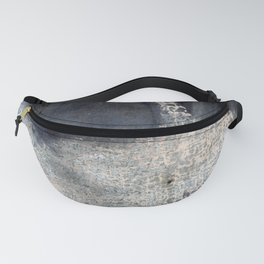 Abstract White Rabbit Fanny Pack
