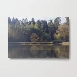 Spring at the Pike Metal Print