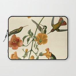 Mangrove Humming Bird (Trochilidae) Laptop Sleeve
