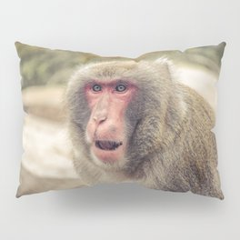 Japanese Snow Monkey Watching Lincoln Park Zoo Pillow Sham