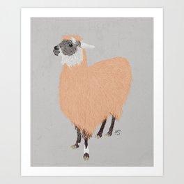 Daphne the Llama Art Print