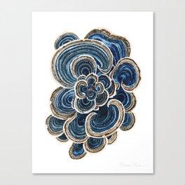 Blue Trametes Mushroom Canvas Print