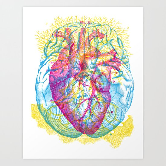 Brain Heart Circulation Art Print
