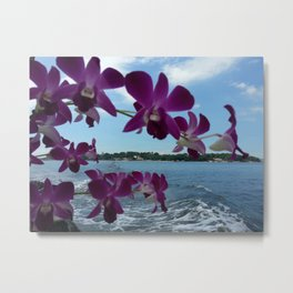 ORCHIDS ON BOARD Metal Print