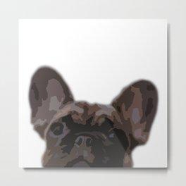 Peepers the French Bulldog Metal Print