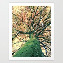 The big strong tree Art Print