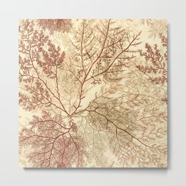 Warm Seaweed Pattern Metal Print