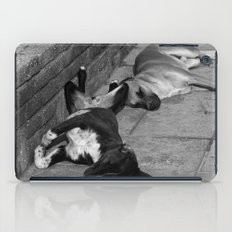 Greek Dogs iPad Case