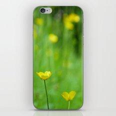 One in Focus iPhone & iPod Skin