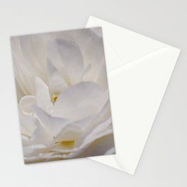 Simply White & Beautiful Flower by Aloha Kea Photography Stationery Cards