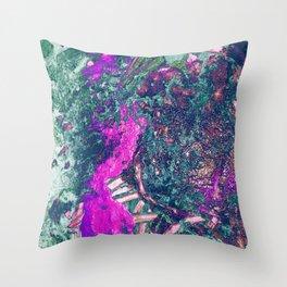 Fairy Blood Throw Pillow