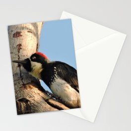 Did You Say HAWK? Stationery Cards