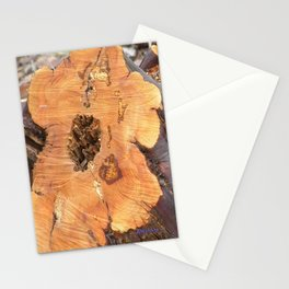 TEXTURES - Manzanita in Drought Conditions #2 Stationery Cards