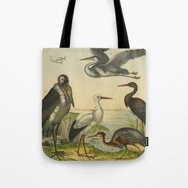 Flamingo & Friends Tote Bag