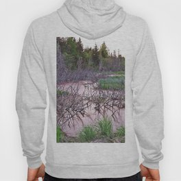 Mountain Swamp Hoody
