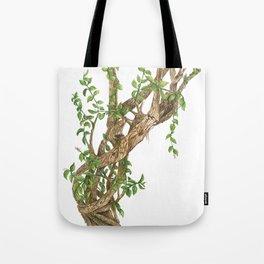 Twisting woods Tote Bag
