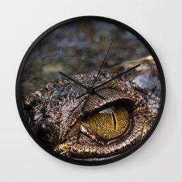 Corcodile eye Wall Clock