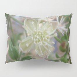 Flowering Vine on a Fence Pillow Sham
