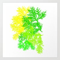 fern Art Prints featuring Fern by Sreetama Ray