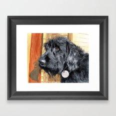 Black Labradoodle Framed Art Print